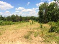 White Oak Plantation High Fence