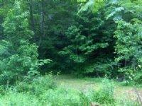 Wagers Mill Tract : Newnan : Coweta County : Georgia