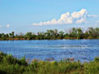 5,625 Acre Cattle / Hunting Ranch