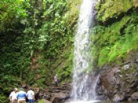 Waterfalls, 207 Ac. Mt. Farm- Cabin : La Suiza De Turrialba : Costa Rica
