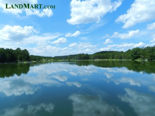 Hunting Plantation-Lakes, Lodge,Tim : Gordon : Twiggs County : Georgia