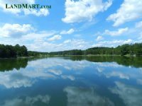 Hunting Plantation-lakes, Lodge,tim
