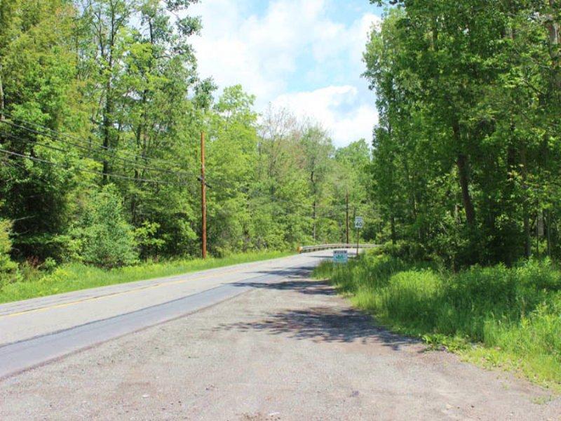 132+/- Acres Of Land : Gouldsboro : Lackawanna County : Pennsylvania