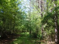 Scull Creek