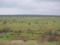 5287 Acre Cattle / Hunting Ranch