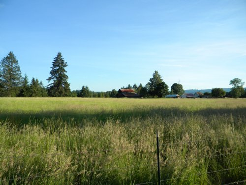 Commercial And Homesite On I-5 : Toledo : Lewis County : Washington