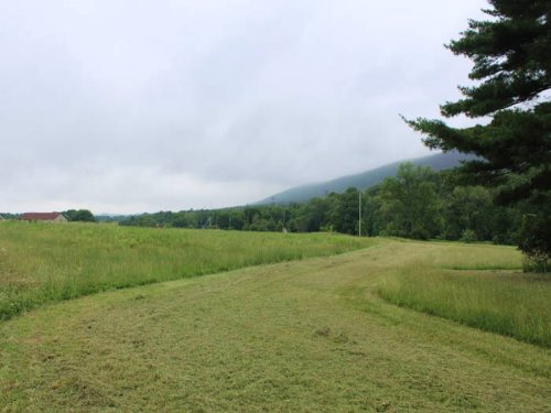 36+/- Acres, Open / Wooded : Berwick : Columbia County : Pennsylvania