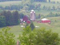 Farm 2 Houses 246 Acres Cattle