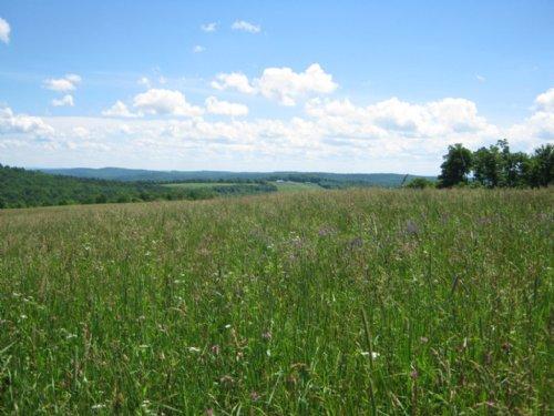 Farmland Near Ithaca Ny 209 Acres : Caroline : Tompkins County : New York