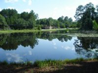 5 Acres With Home & Pond