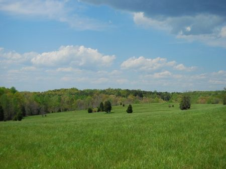 81 Acre Walnut Grove Farm : Roebuck : Spartanburg County : South Carolina