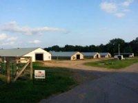 78+/- Acre Poultry & Cattle Farm