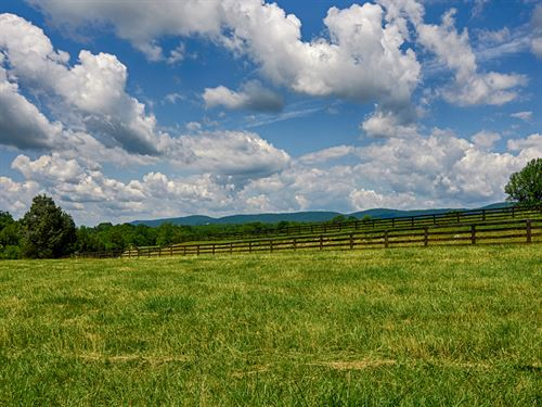 Cobham Forest 50 Acres : Keswick : Albemarle County : Virginia