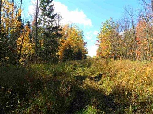 Tbd Off Tuski Rd., Mls# 1088652 : Bergland : Ontonagon County : Michigan