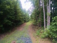 Secluded Splendor : Buckingham : Buckingham County : Virginia