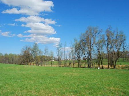 8.14 Acres Near Inman : Inman : Spartanburg County : South Carolina
