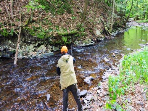34 Acs 237' Salmon Fishing $78,600 : Sandy Creek : Oswego County : New York