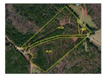 18 Acres Open And Wooded