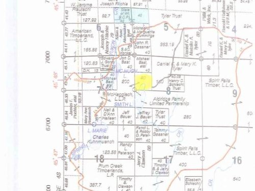 40 Acres Of Hunting Land : Minocqua : Oneida County : Wisconsin