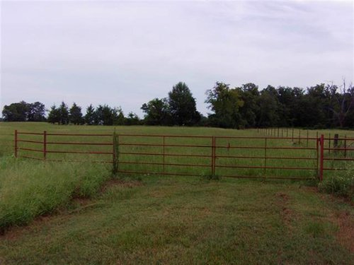 59+ Acres (#29307) : Avery : Red River County : Texas