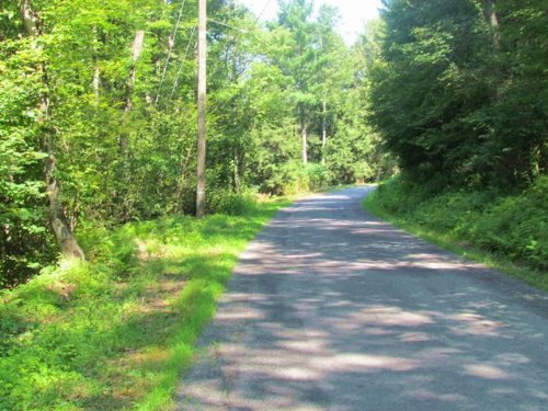 27+/- Wooded Acres In Stillwater : Stillwater : Columbia County : Pennsylvania