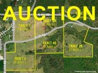 Multi-parcel Land & Home Auction