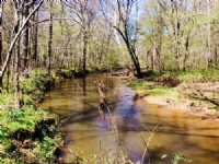 Coosa 202 Timber Investment