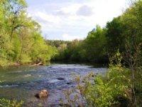 Frog Mountain Property : Piedmont : Cherokee County : Alabama