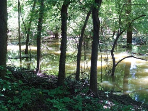 133 Ml Acre Crp Tract : Forrest City : St. Francis County : Arkansas