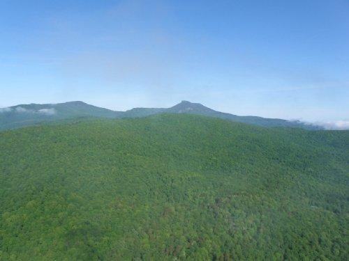 Lower Devlin Parcel : Duxbury : Washington County : Vermont