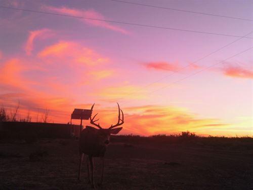 East Rim Ranch : Alpine : Brewster County : Texas