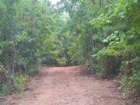 180+/- Ac Saugahatchee Creek : East Tallassee : Tallapoosa County : Alabama