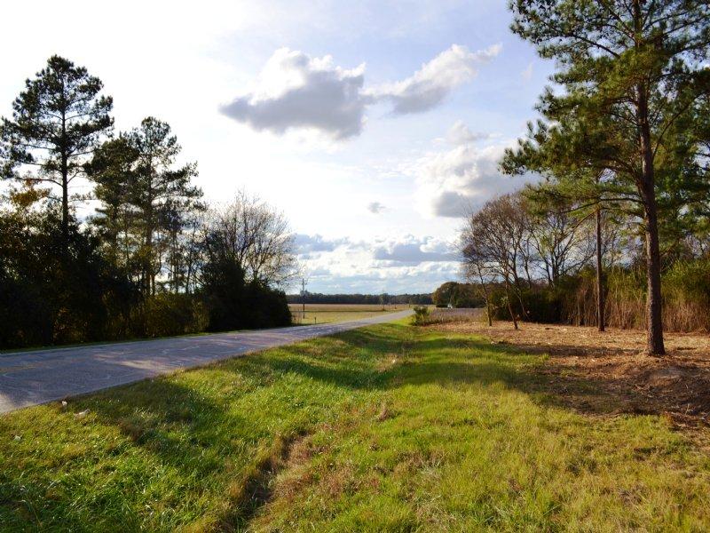 Holtville Lot A 10 +/- Acres : Holtville : Elmore County : Alabama