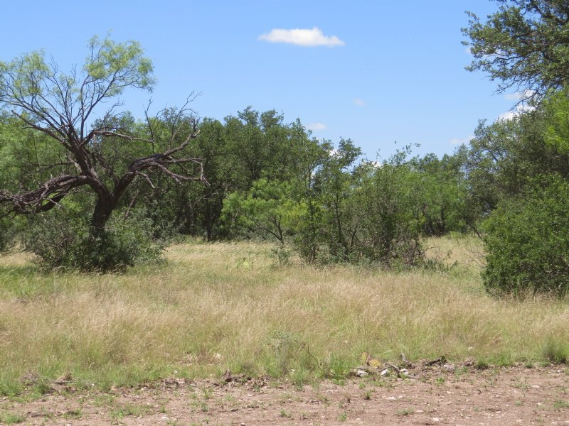 Recreational Hunting Property : Farm for Sale by Owner : Eden : Concho  County : Texas