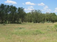 Recreational Land : Eden : Concho County : Texas