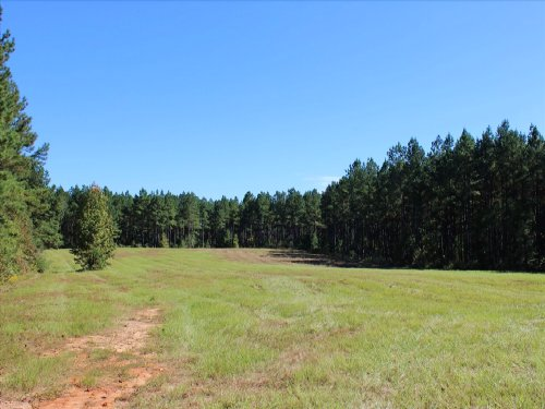 Mini Farm Or Large Homesite : Greensboro : Greene County : Georgia