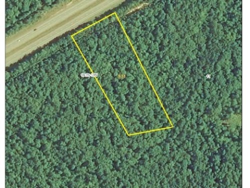 Reduced Lot 34 Maple Creek Farms : Hensley : Saline County : Arkansas
