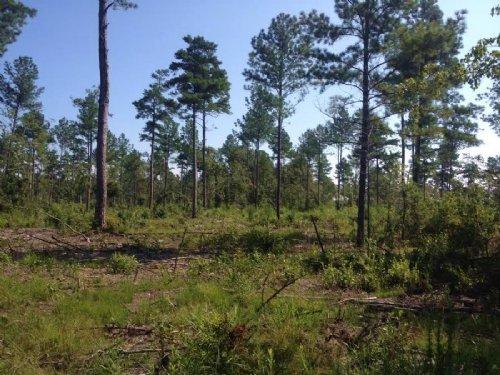 5.6 Acres : Darlington : South Carolina