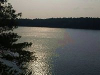 66 Acres With Access To Hyde Lake