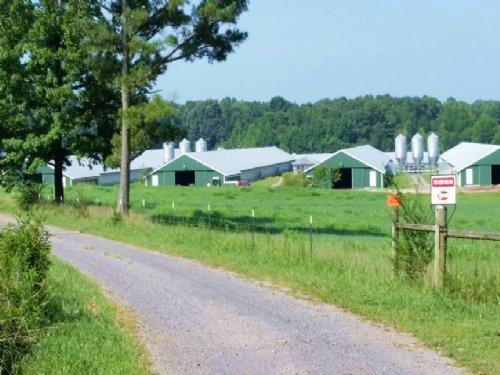 4 House Broiler Farm & Cattle Farm : Resaca : Gordon County : Georgia