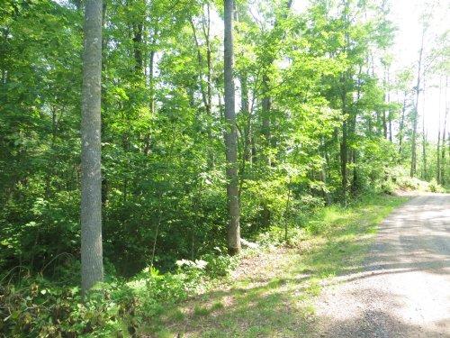 5.59 Ac Big Thunder Lane : Lac Du Flambeau : Vilas County : Wisconsin
