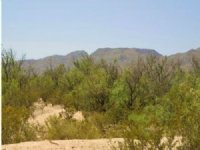10.15 Acre Land For Sale
