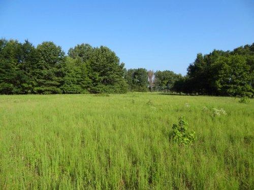 Price Reduced 42.61 Ml Acres : Wheatley : St. Francis County : Arkansas