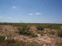 10 Acre Of Vacant Land For Sale