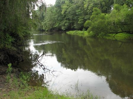 374 Acres On The Ogeechee River : Rocky Ford : Jenkins County : Georgia