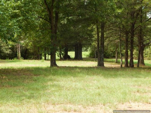 74 Acres : Terry : Hinds County : Mississippi