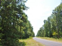 203 Acres Mangum Road