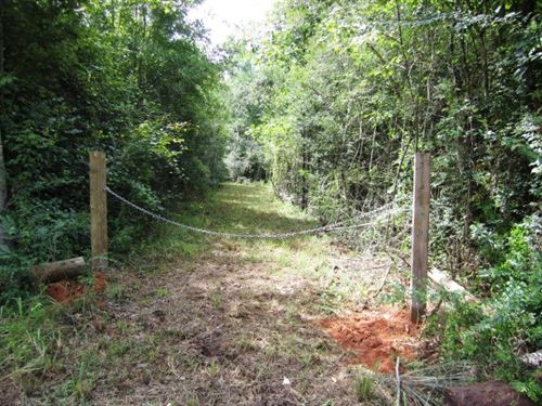 Hunting Tract In Sw, Ms 23 Acres : Liberty : Amite County : Mississippi