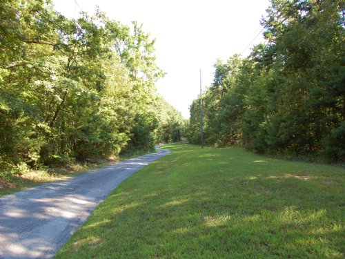 15 Acres On Signal Mountain : Signal Mountain : Sequatchie County : Tennessee