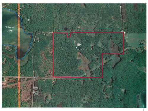 Big Buck Country : Branch : Mason County : Michigan